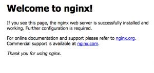 nginx instalación